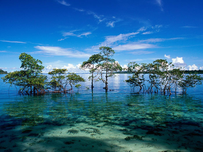Andaman And Nicobar Islands, India
